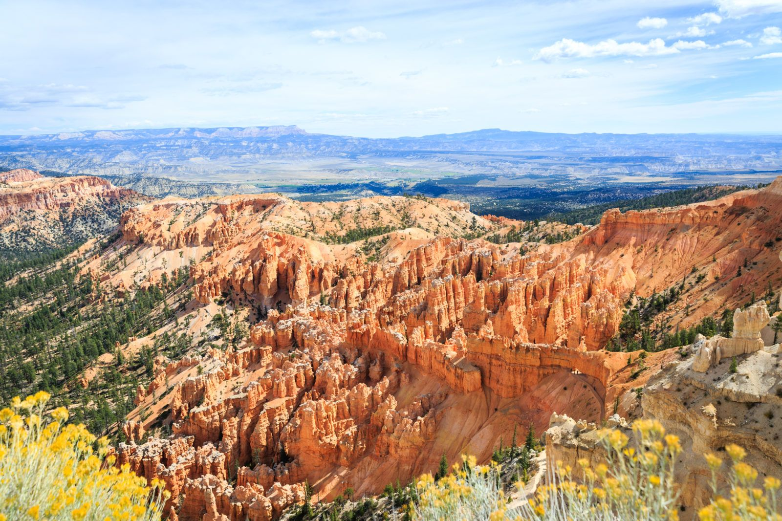 Travel Log : Fall Road Trip in Montana, Wyoming and