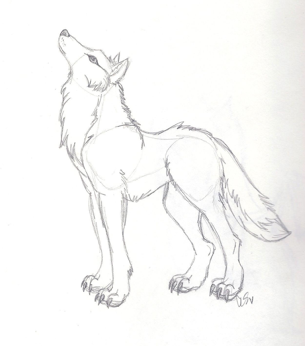 сидящий волк рисунок карандашом долго строительство куполов