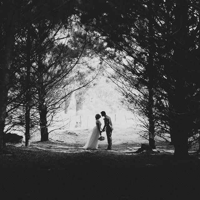 Kumeu wedding inspiration - beneath the trees at Muriwai #jelphotography #aucklandphotographer alternative wedding photographer