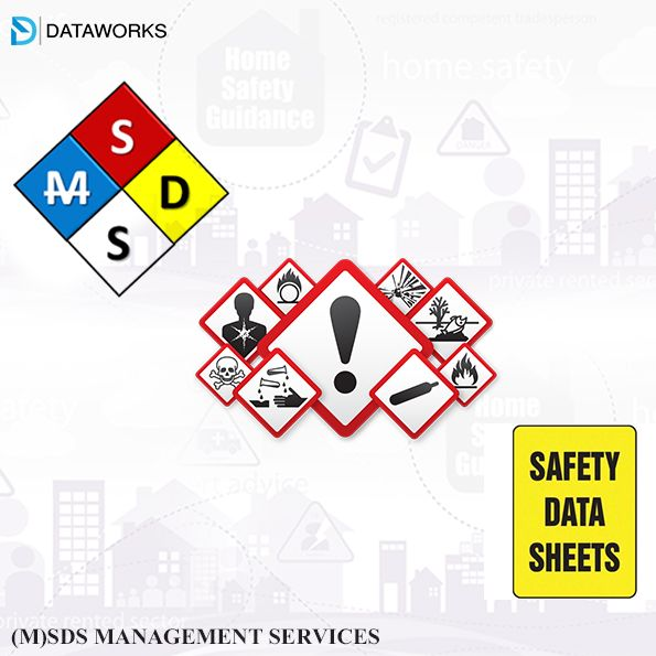 Outsource Dataworks has been acquiring the latest updated msdss and