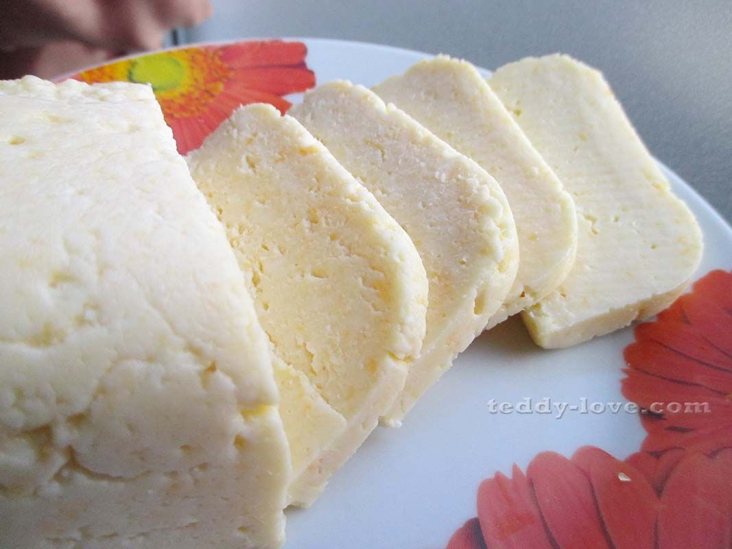 Сыр из молока в домашних условиях рецепт 130