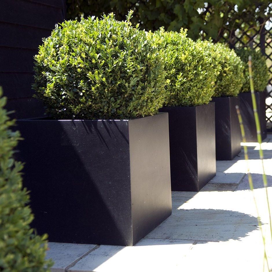 Black Square Planters Square Planters Small Garden 400 x 300