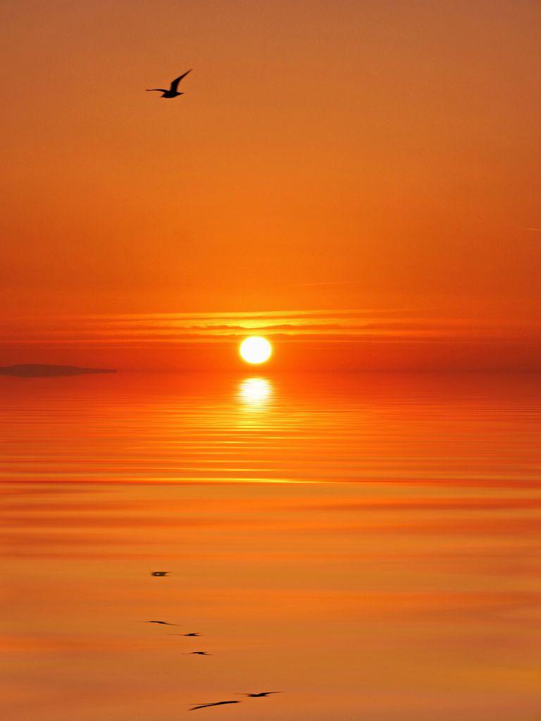 Orange sea. (by cobby31)