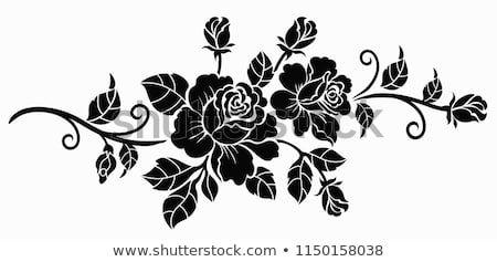 Pin Di Rosifalcone Su Fiori Disegni Di Rose Disegno Fiori