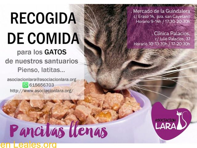 Donaciones De Alimentos Espana Madrid Dona Comida Para La