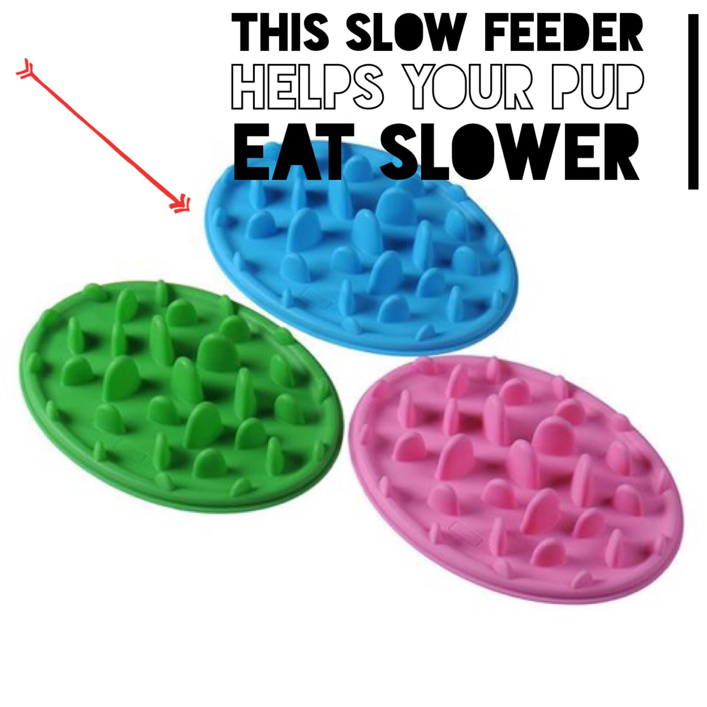 Is your pup(s) eating way too fast? The slow feeder bowl