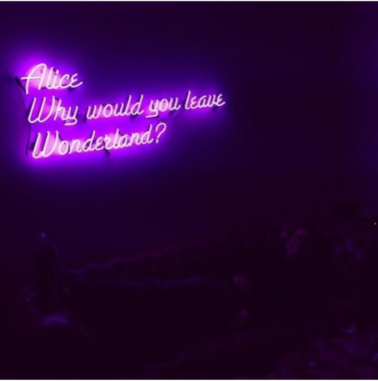 Light Quotes Cris Figueiredo  Quotes  Pinterest  Neon Depressing And