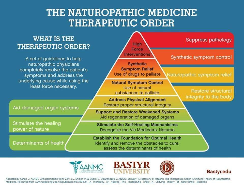 A Nice Visual Description Of The Therapeutic Order That Guides