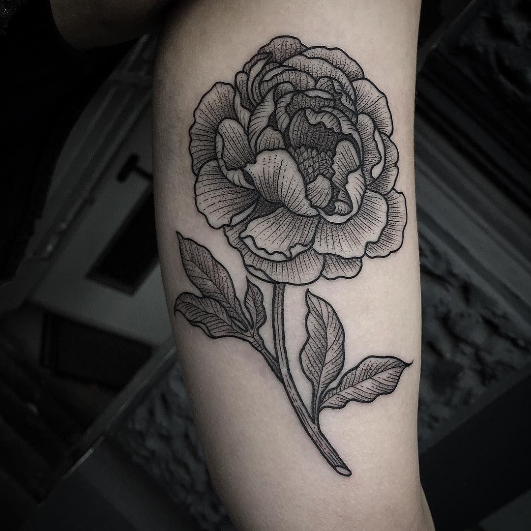 See this instagram photo by suflanda u likes ink