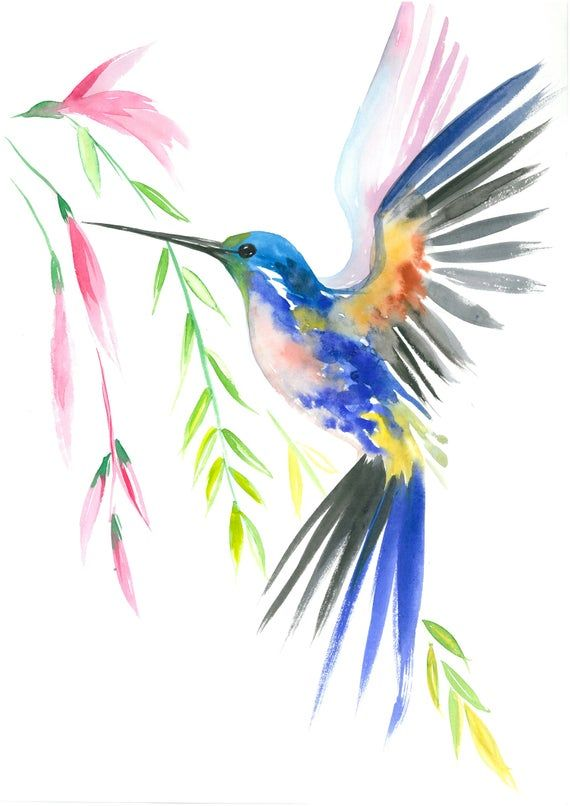 Birds of Paradise, Set of Watercolor print Waterco