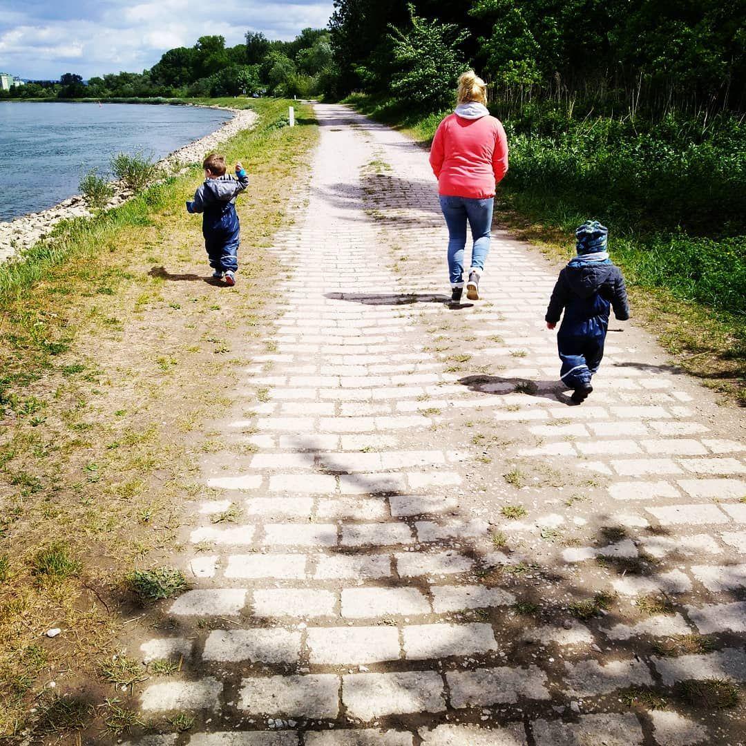 Am Rhein! #pfützen #spazieren #saturday #dadlife #tattoolovers #freelikethewind