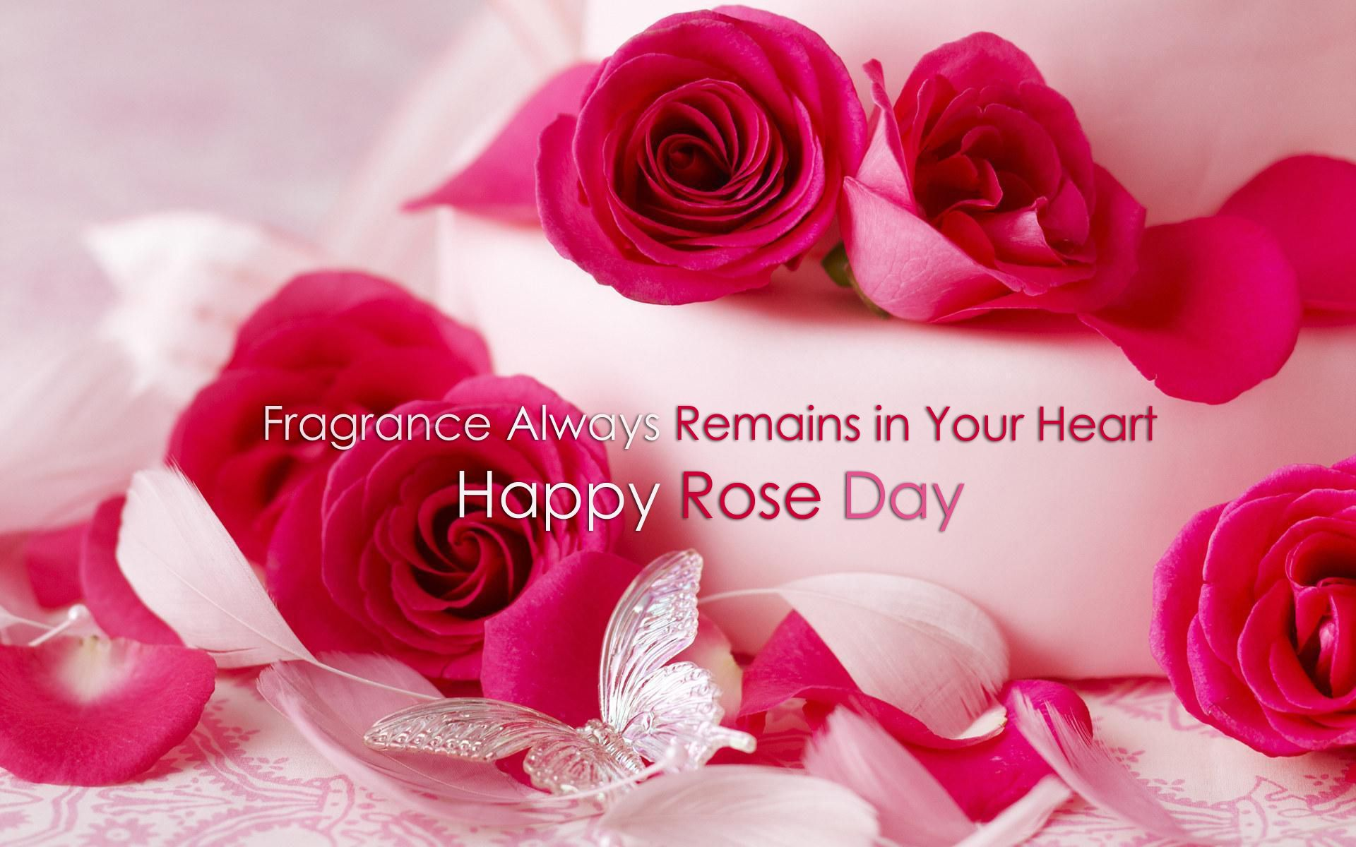 The Valentine Week Geared Up With The Rose Day On Feb 7 Every Year The Rose Day Marks The Start Of Valentine S Da Happy Rose Day Romantic Roses Rose Wallpaper
