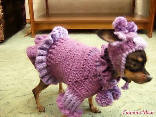 Одежда для собак - Вязание - Страна Мам
