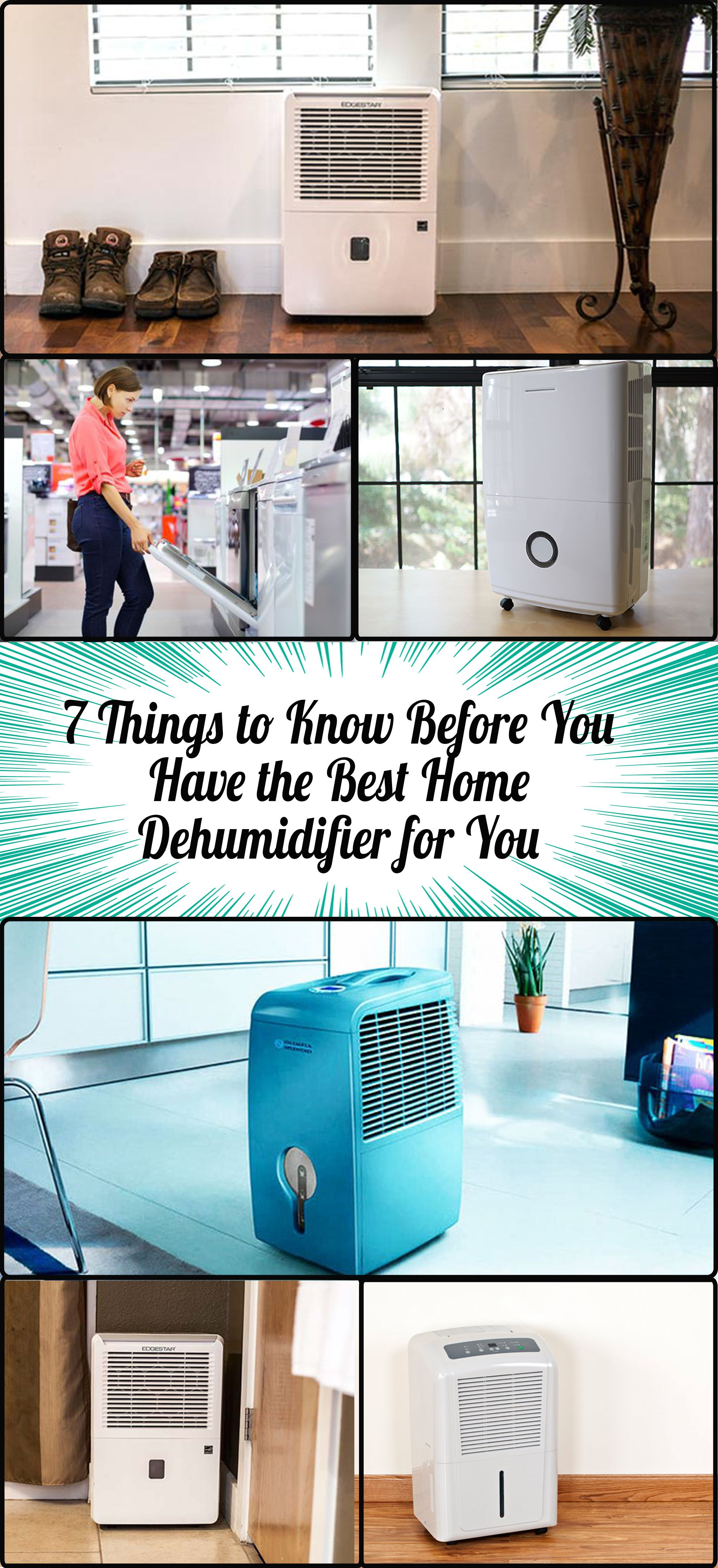 7 Things to Know Before Having the Best Home Dehumidifier