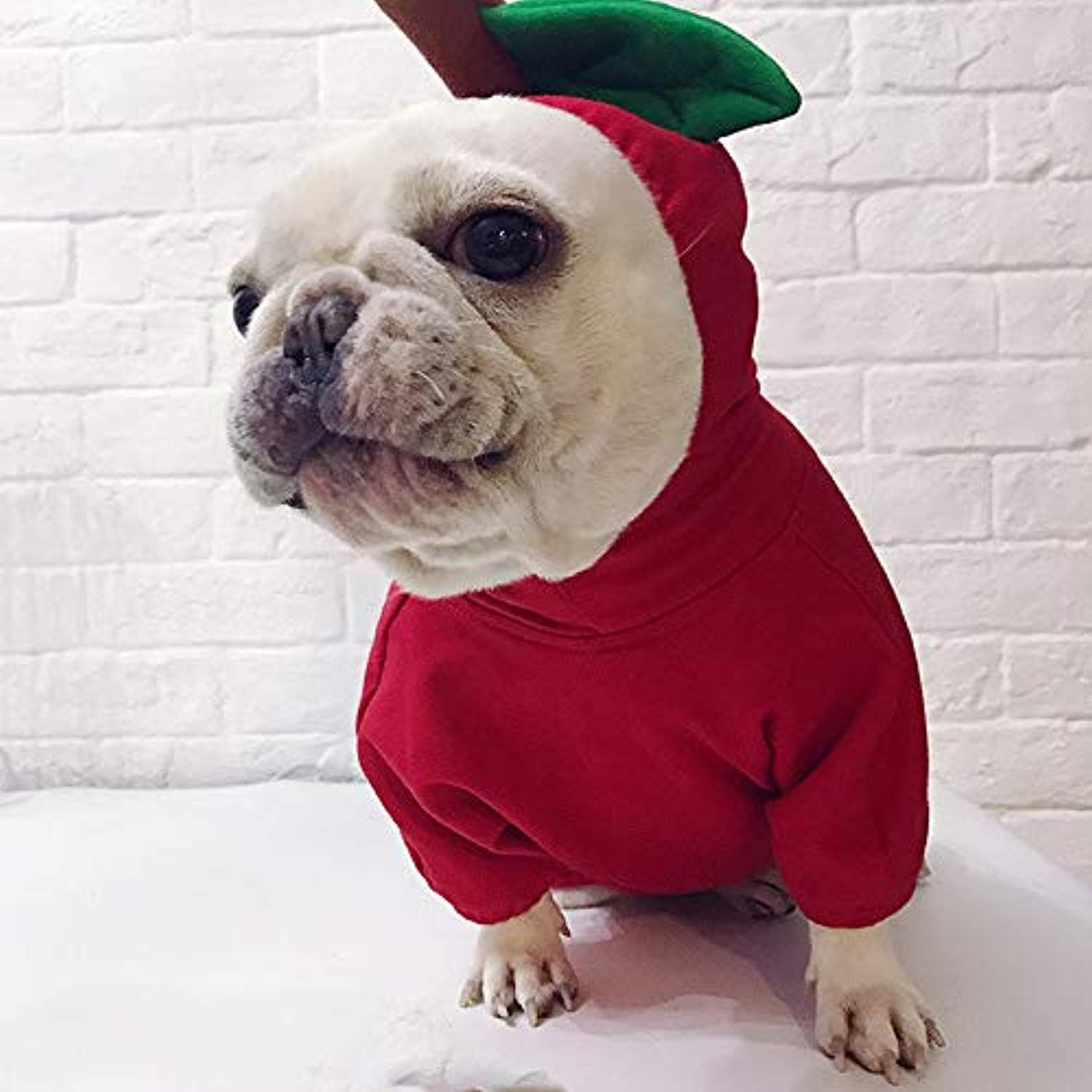 Goodtrade8 Clearance Christmas Dog Clothes Pet Sweatshirt For