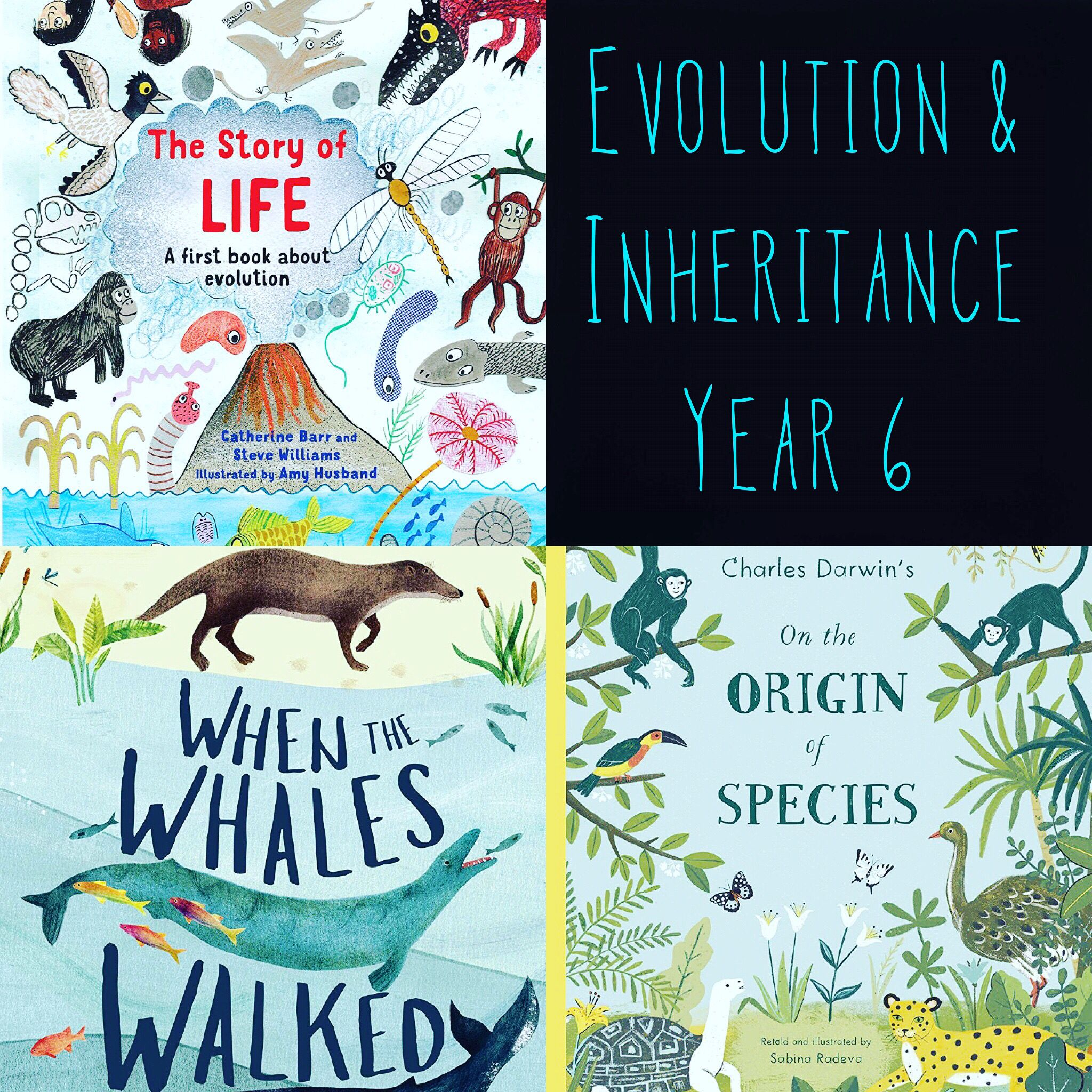 Fantastic Books To Support Year 6 Unit In Evolution And