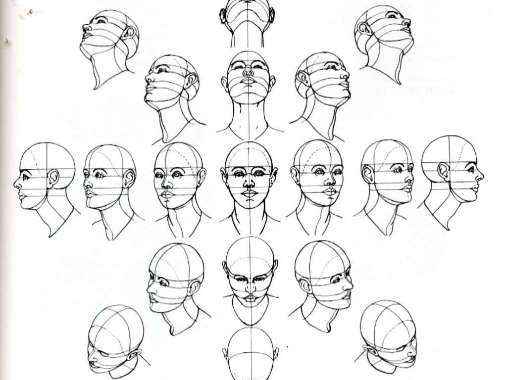C79be18c3d45b6b52e932f16ca29dc82 Jpg 1024 768 Drawing The Human Head Human Drawing Sketches