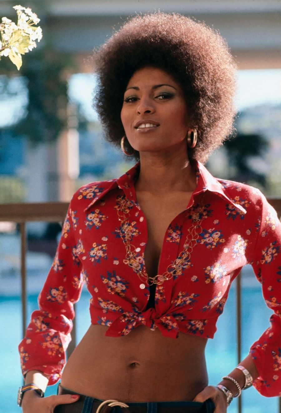 2019 Pam Grier nudes (62 foto and video), Tits, Sideboobs, Twitter, legs 2018