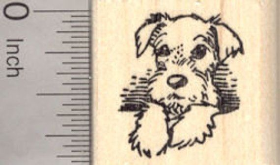 Miniature Schnauzer Puppy Dog With Natural Ears Rubber Stamp