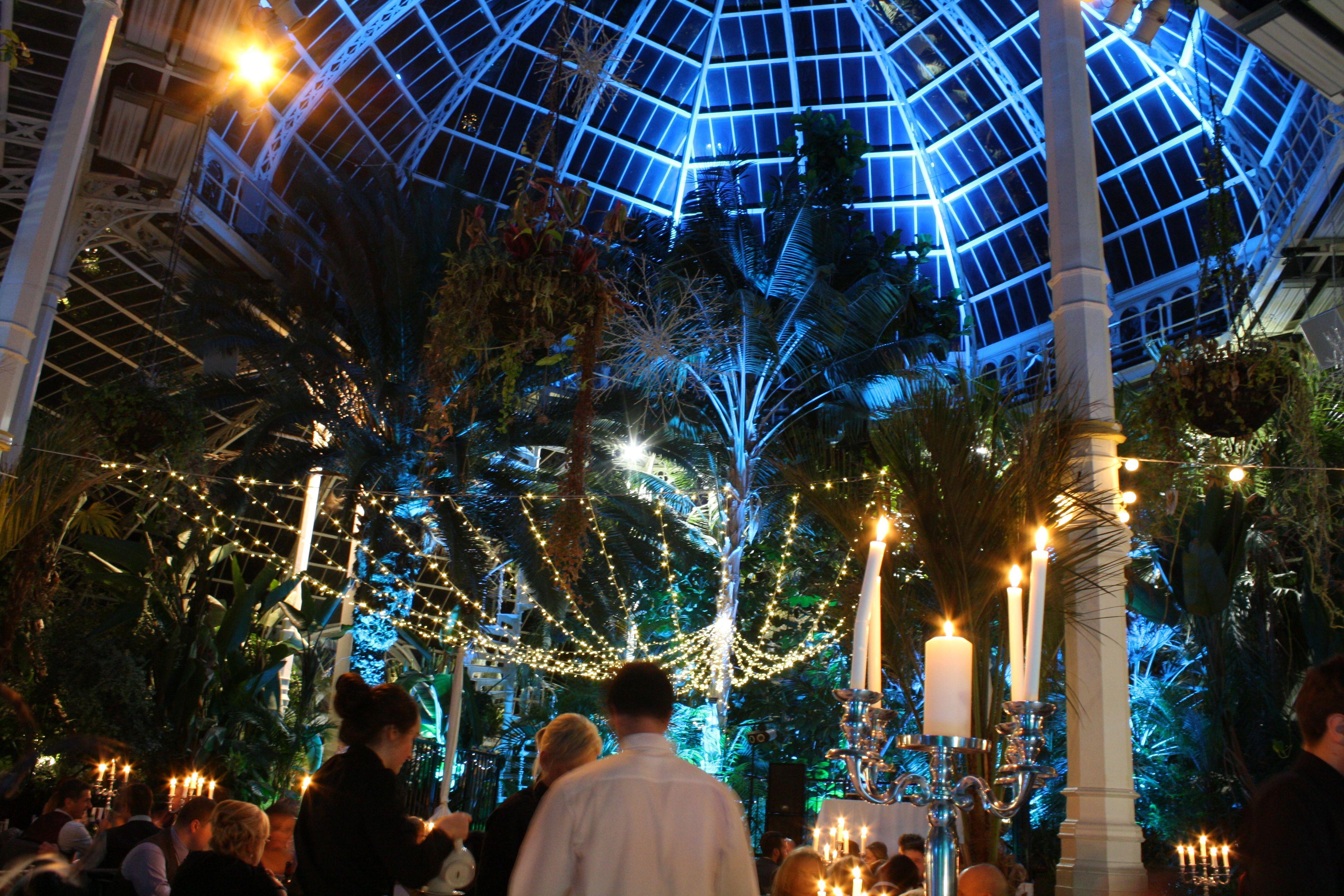 Winter Wedding Lighting Backdrop Sefton Park Palm House