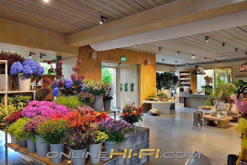 Far from an ordinary flower shop oogenlust netherlands is a