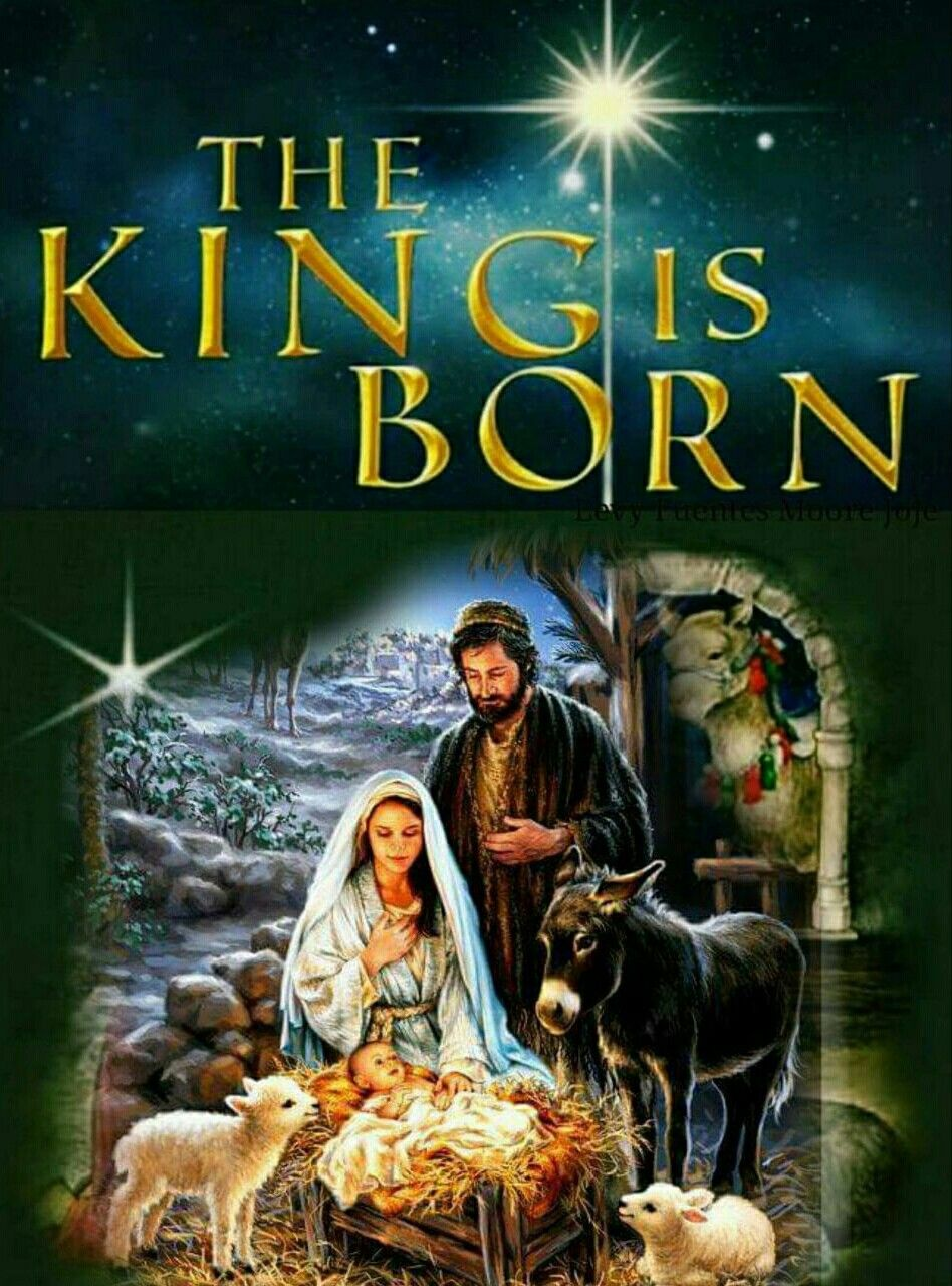 Pin by Jerry Law on (Christmas) Our Savior Life of jesus