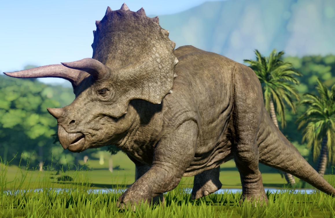 Triceratops en 2020   Animales prehistóricos, Animales, Dinosaurios