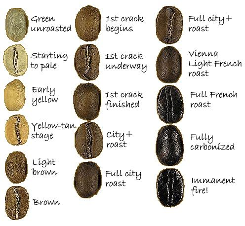 The lighter the roast the more caffeine it will contain. Some of the basics of roasting green coffee.