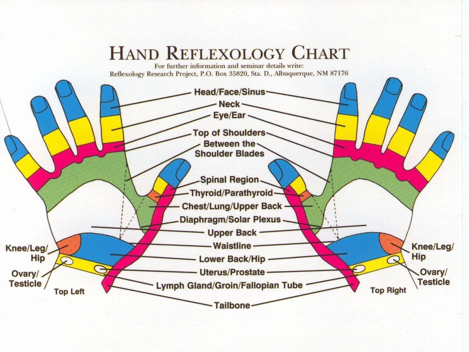 Free Reflexology Foot Chart New Reflexology Products Hand Reflexology Charts Personalized In 2020 Reflexology Chart Reflexology Hand Chart Hand Reflexology