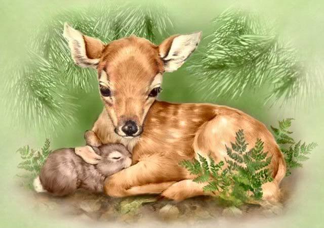Как нарисовать на открытке животного, красно