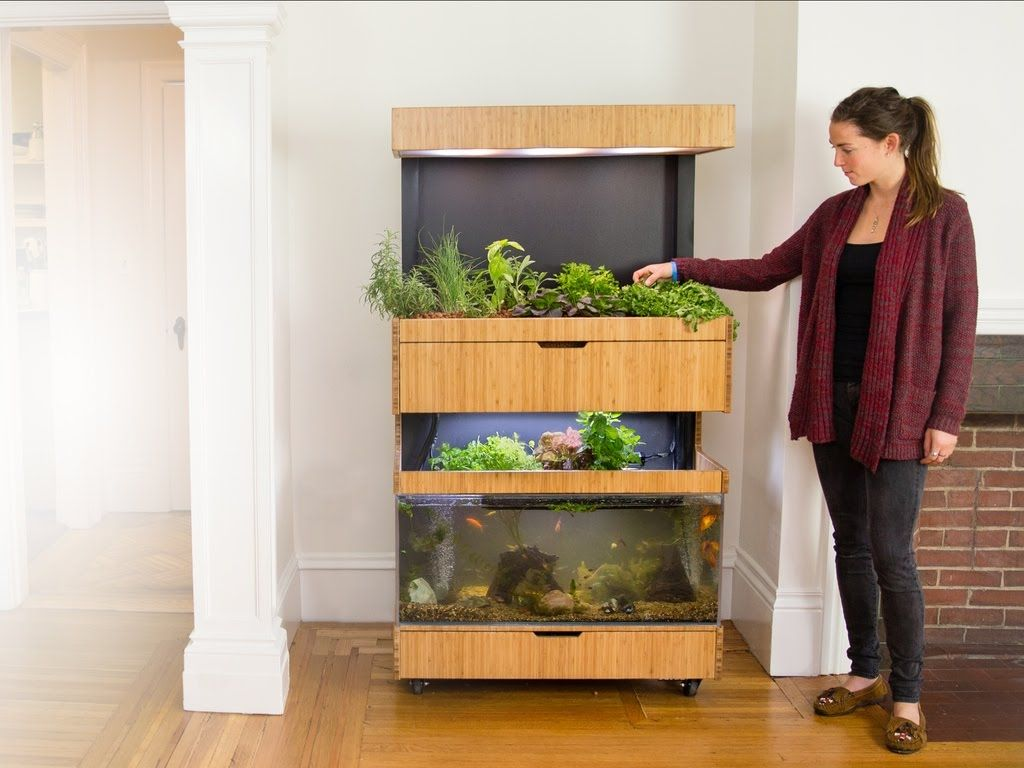 Garden and home zambia  Kickstarter Grove Ecosystem  Grow Fresh Food In Your Home The