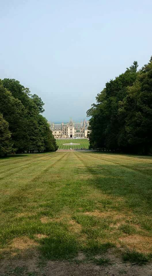 Love the green framing in Biltmore House.
