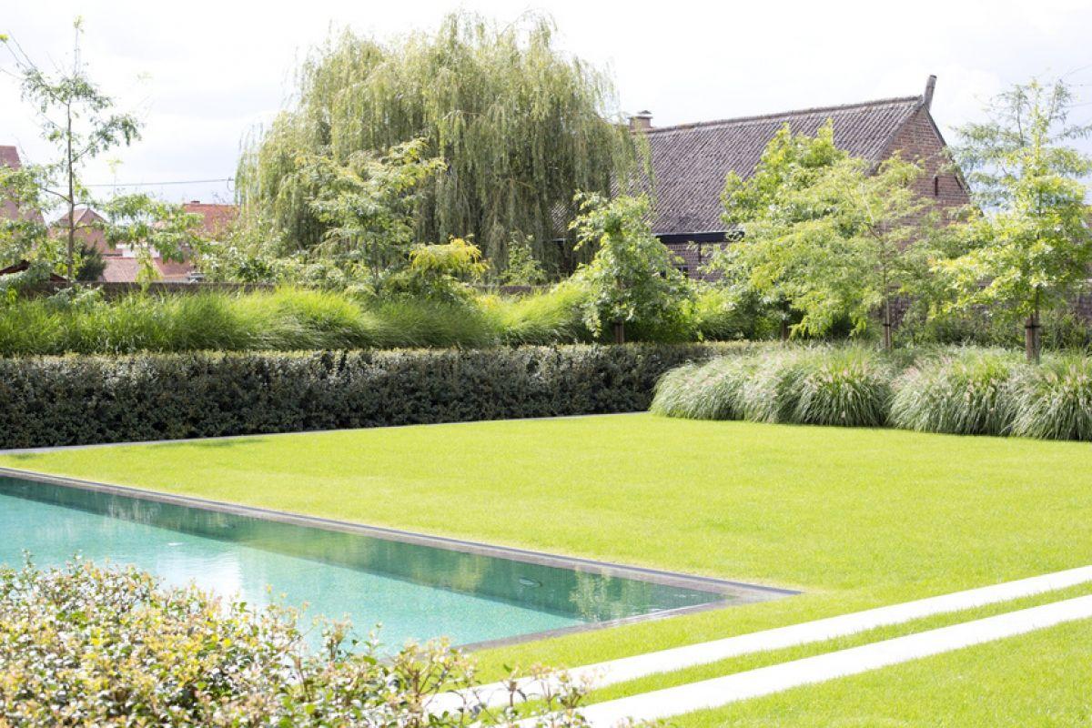 Filip Van Damme | Home & Garden | Pinterest | Van damme, Gardens and ...