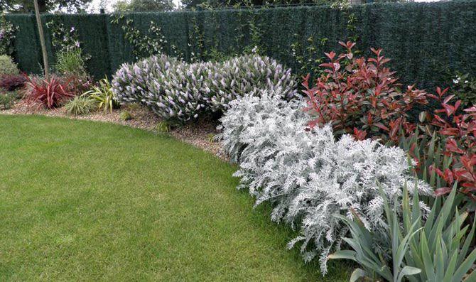 arbustos de sombra - Buscar con Google jardin Pinterest Gardens