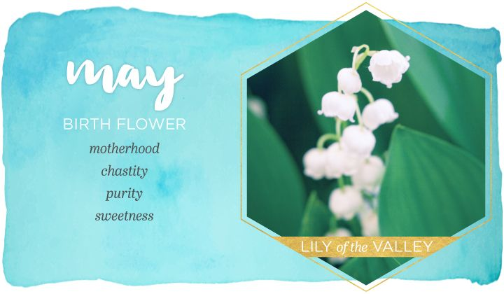 May Birth Flower Lily Of The Valley Ftd Com Birth Flowers May Birth Flowers Birth Month Flowers