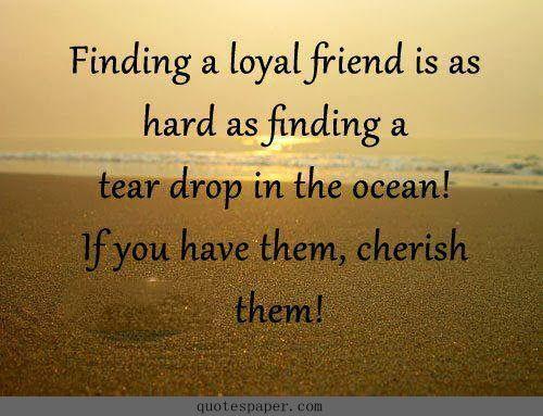 cherish friendship quotes