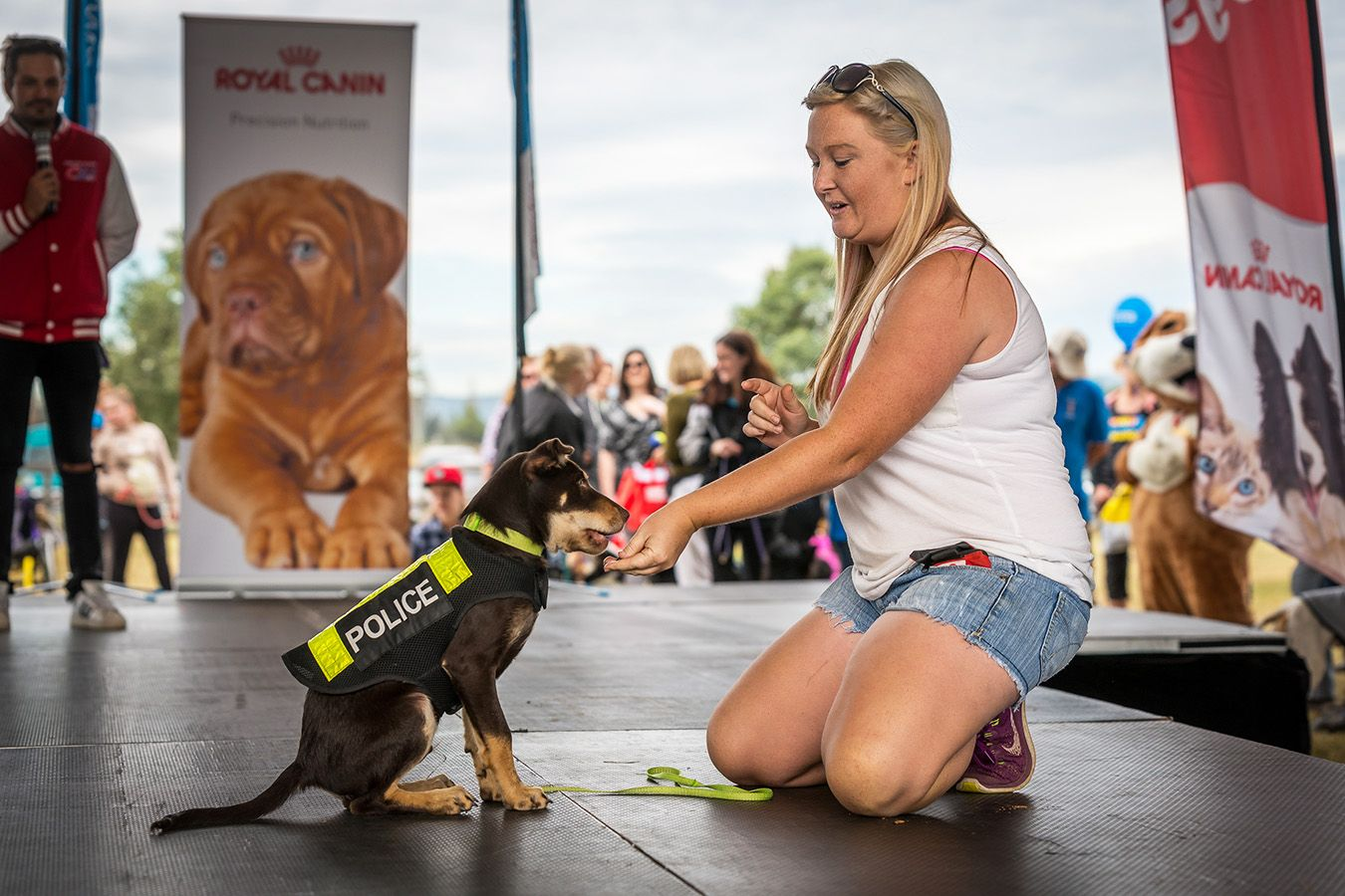 2019 Paws In The Park Camden May 5 Australian Dog Lover Dog Competitions Scruffy Dogs Dogs Day Out