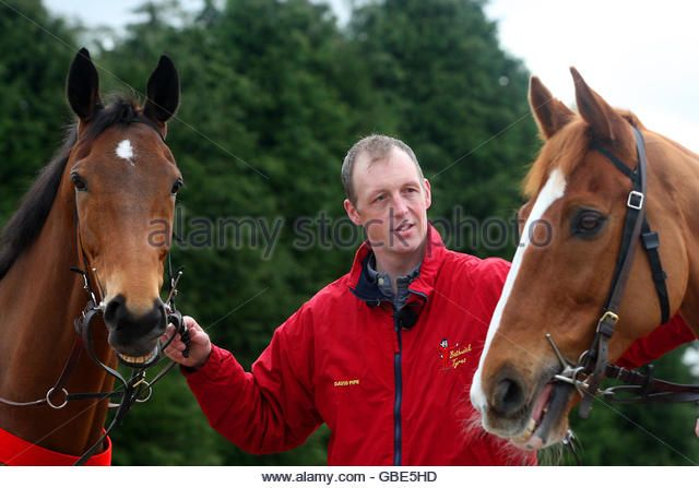 horse-racing-david-pipe-racing-stables-press-day-gbe5hd.jpg (640×447)