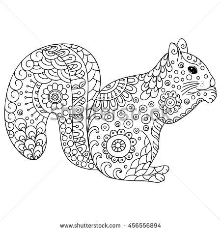 Image result for squirrel adult colouring pages vector