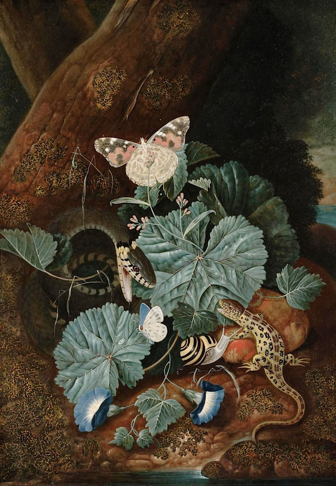 Carl wilhelm de hamilton a forest floor with a lizard a