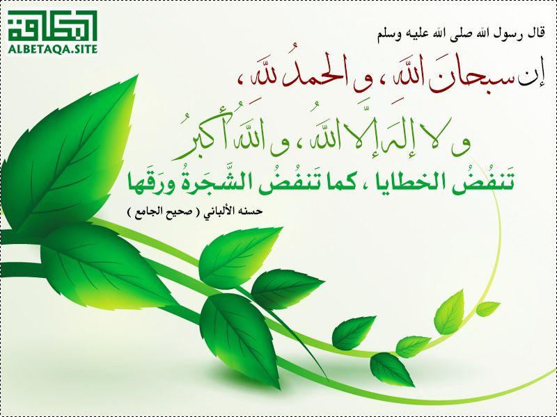 سبحان الله والحمد لله ولا إله إلا الله والله أكبر Duaa Islam Islam Plant Leaves