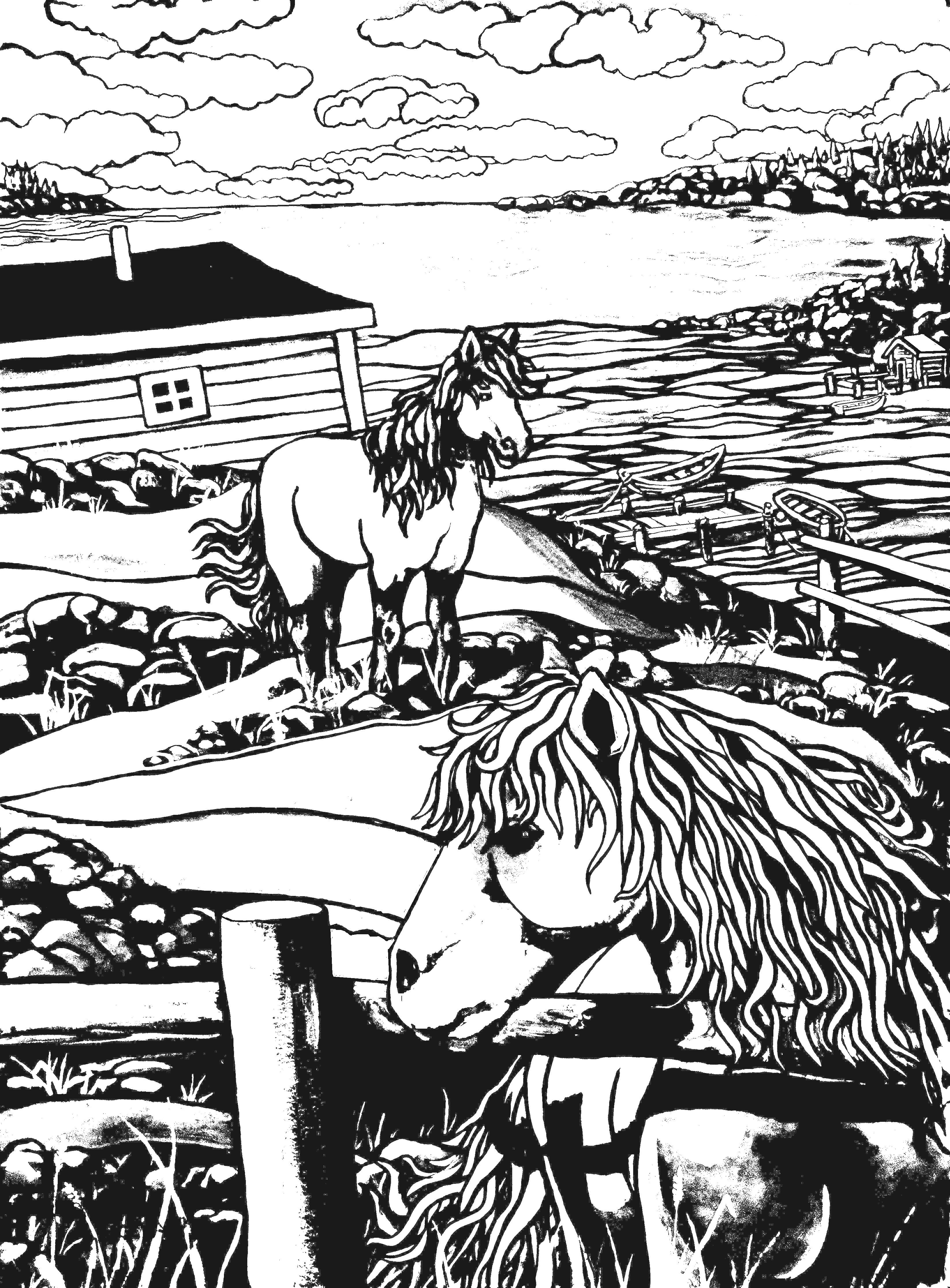 Newfoundland Ponies Colouring Page Featuring The Art Of Reilly Fitzgerald Coloring Colouringbook Coloringbook Coloringsheets