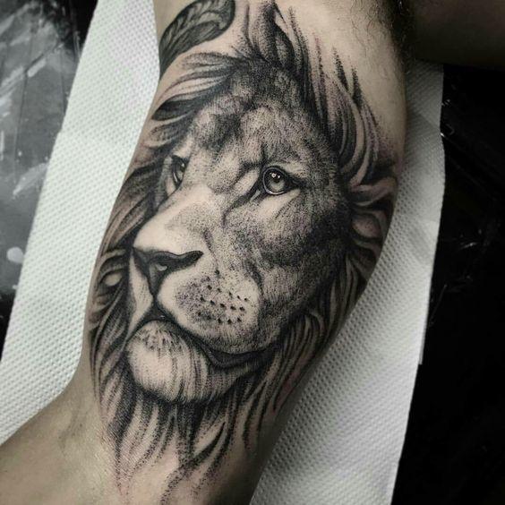 Pin De Lee Em Lion Tatuagens De Leao