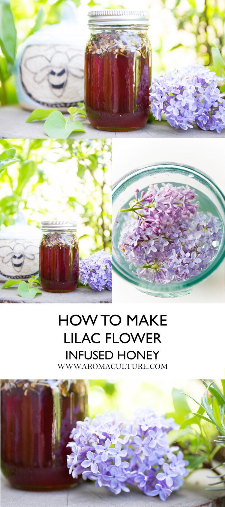 How To Make Use Lilac Flower Honey In 2020 With Images Lilac Flowers Lilac Honey Recipes