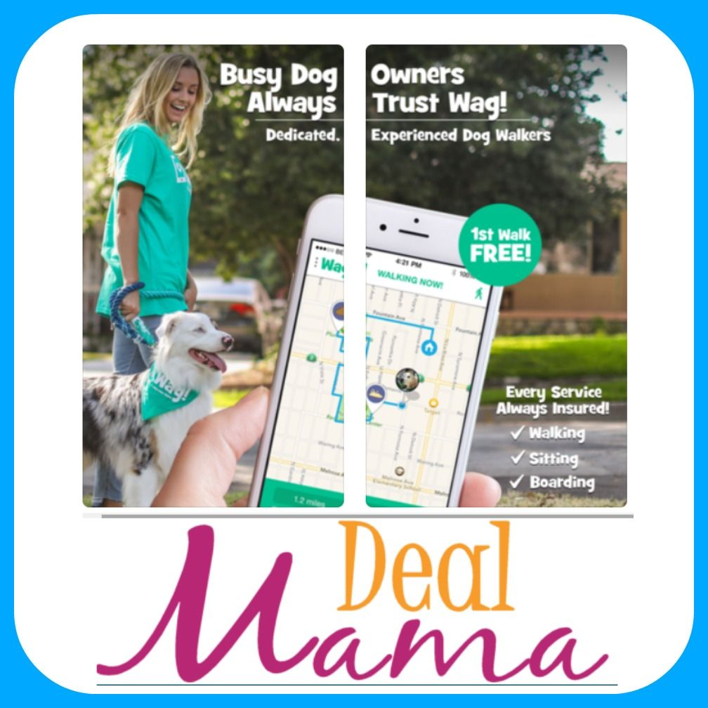 FREE 30 Minute Dog Walk with Wag App Download Dog