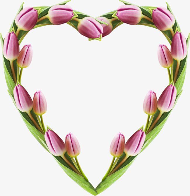 卡通紫色郁金香花朵心形边框