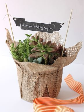 Teacher appreciationgardenplant gift ideas this teacher teacher appreciationgardenplant gift ideas this teacher appreciation printable will look great on a plant gift whether it is a bought plant or one you solutioingenieria Choice Image