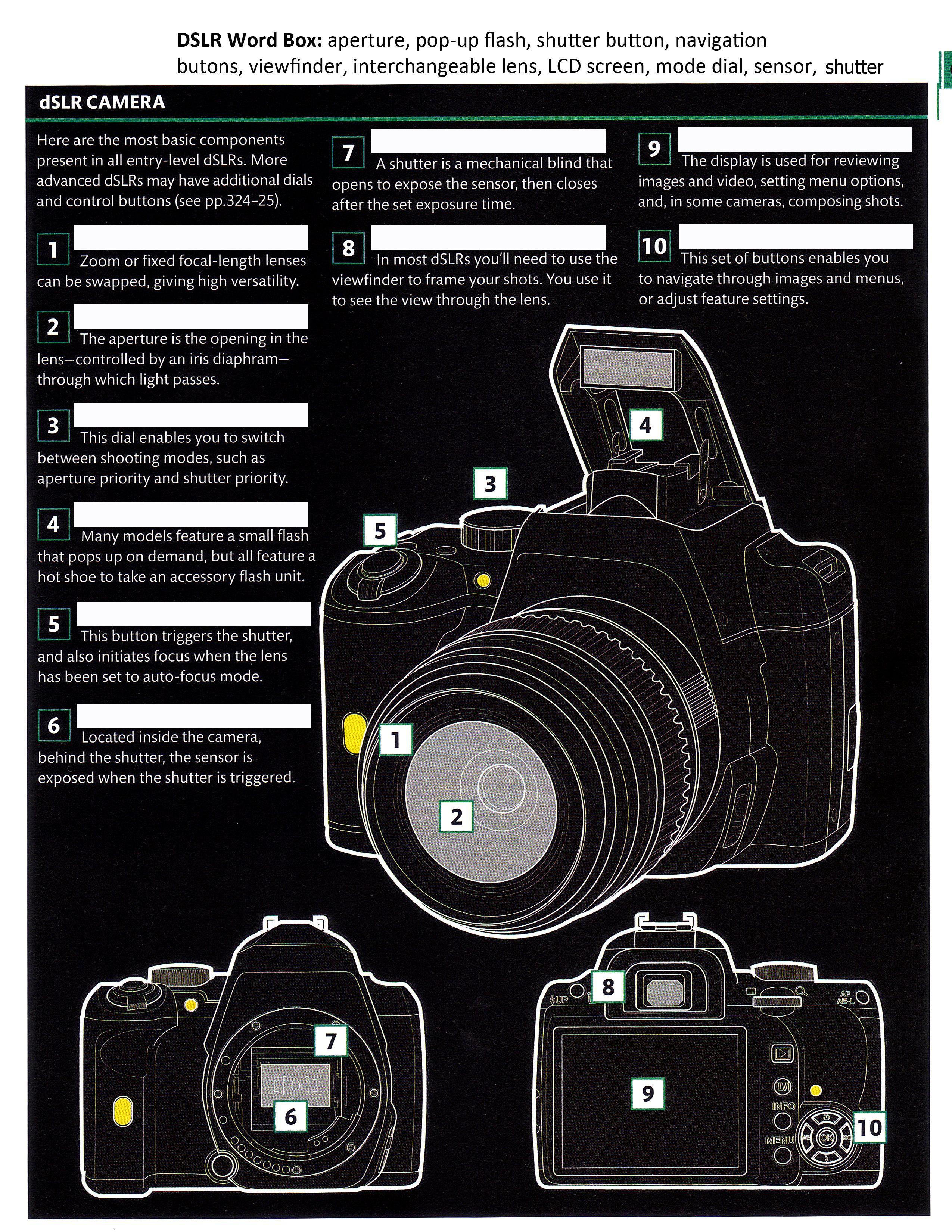 Camera Diagram Dslr