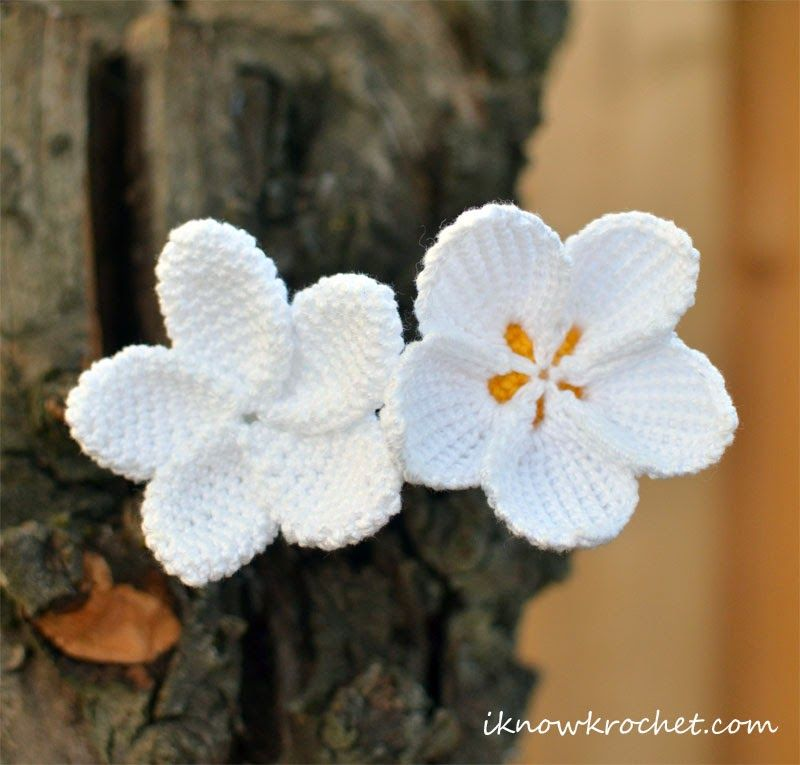 Crochet Plumeria Flower - Free Pattern | Crochet Patterns ...