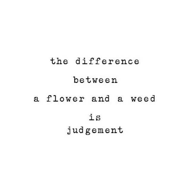 Less Judgement. More Understanding And Appreciation
